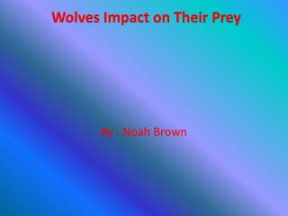 Wolves Impact on Their Prey