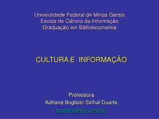 Universidade Federal de Minas Gerais Escola de Ciência da Informação Graduação em Biblioteconomia