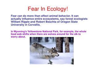 Fear In Ecology!