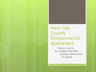 New York County Environmental Assessment