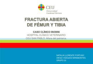 FRACTURA ABIERTA  DE FÉMUR Y TIBIA CASO CLÍNICO 09/2056 HOSPITAL CLÍNICO VETERINARIO