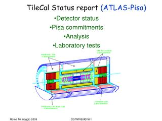 Detector status Pisa commitments Analysis Laboratory tests
