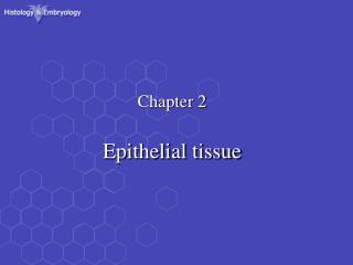 Chapter 2 Epithelial tissue