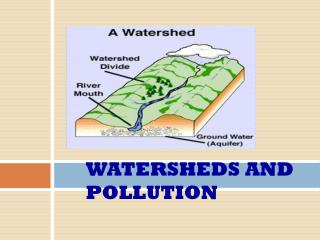WATERSHEDS AND POLLUTION