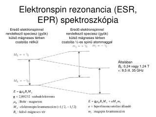Elektronspin rezonancia (ESR, EPR) spektroszkópia