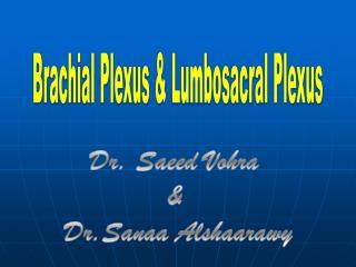 Brachial Plexus & Lumbosacral Plexus
