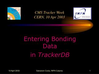 CMS Tracker Week CERN, 10 Apr 2003