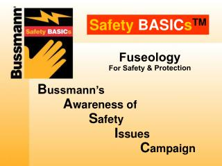 Safety BASICsTM