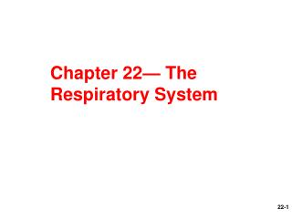 Chapter 22— The Respiratory System