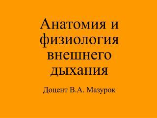 Анатомия и физиология внешнего дыхания Доцент В.А. Мазурок