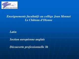 Enseignements facultatifs au collège Jean Monnet Le Château d'Olonne