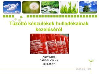 Nagy Gréta DANDELION Kft. 2011.11.17.