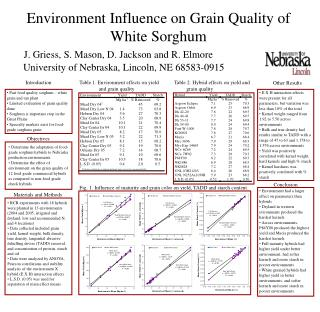 Environment Influence on Grain Quality of White Sorghum