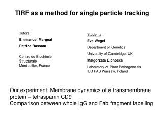 TIRF as a method for s ingle particle tracking