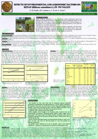 EFFECTS OF ENVIRONMENTAL AND AGRONOMIC FACTORS ON KENAF ( Hibiscus cannabinus  L.) IN  PO VALLEY