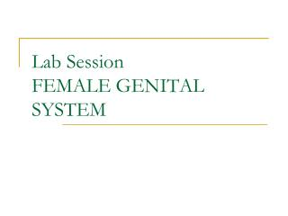 Lab Session FEMALE GENITAL SYSTEM