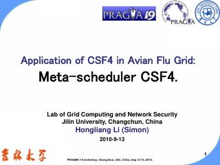 Application of CSF4 in Avian Flu Grid: Meta-scheduler CSF4.