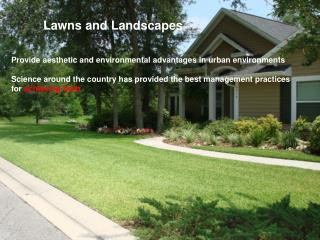 Provide aesthetic and environmental advantages in urban environments