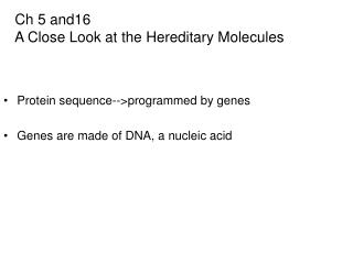Ch 5 and16   A Close Look at the Hereditary Molecules