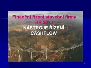 Finanční řízení stavební firmy FIR 2013 NÁSTROJE ŘÍZENÍ CASHFLOW