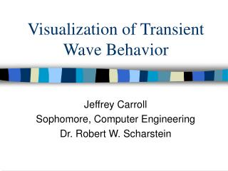 Visualization of Transient Wave Behavior