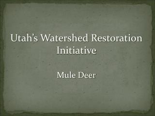 Utah�s Watershed Restoration Initiative Mule Deer