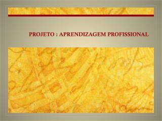 PROJETO : APRENDIZAGEM PROFISSIONAL