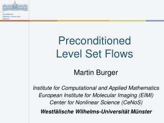 Preconditioned  Level Set Flows