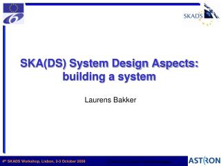 SKA(DS) System Design Aspects: building a system
