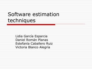 Software estimation techniques