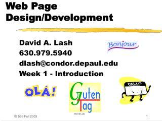 Web Page Design/Development