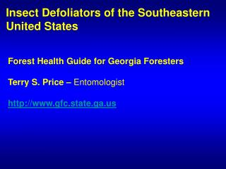 Insect Defoliators of the Southeastern  United States
