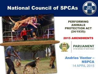Animal Cruelty: