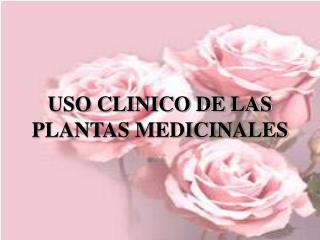 USO CLINICO DE LAS PLANTAS MEDICINALES