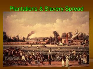 Plantations & Slavery Spread
