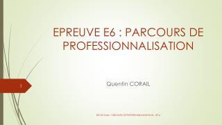 EPREUVE E6 : PARCOURS DE PROFESSIONNALISATION