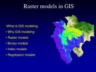 Raster models in GIS