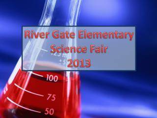 River Gate Elementary Science Fair 2013