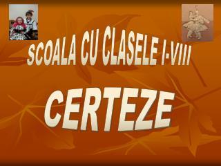 SCOALA CU CLASELE I-VIII