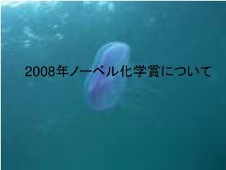 2008 年ノーベル化学賞について