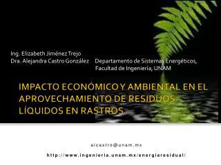 IMPACTO ECONÓMICO Y AMBIENTAL EN EL APROVECHAMIENTO DE RESIDUOS LÍQUIDOS EN RASTROS