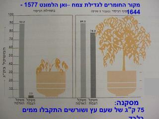 מקור החומרים לגדילת צמח –ואן הלמונט 1577 - 1644