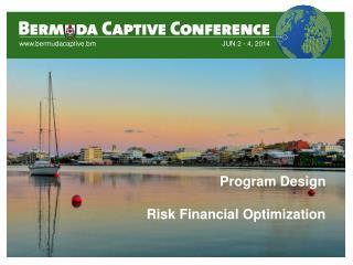 Program Design Risk Financial Optimization