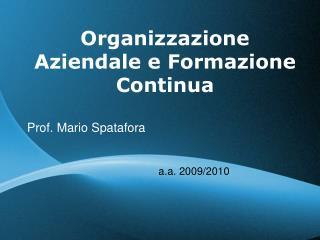 Organizzazione Aziendale e Formazione Continua Prof. Mario Spatafora