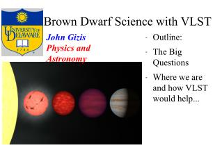 Brown Dwarf Science with VLST