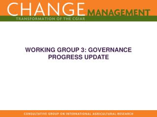 WORKING GROUP 3: GOVERNANCE PROGRESS UPDATE