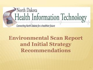 Environmental  Scan Report and Initial Strategy Recommendations