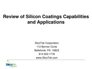 Review of Silicon Coatings Capabilities and Applications