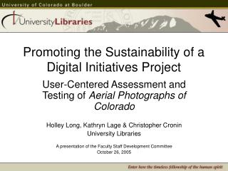 Promoting the Sustainability of a Digital Initiatives Project