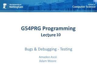 Bugs & Debugging - Testing